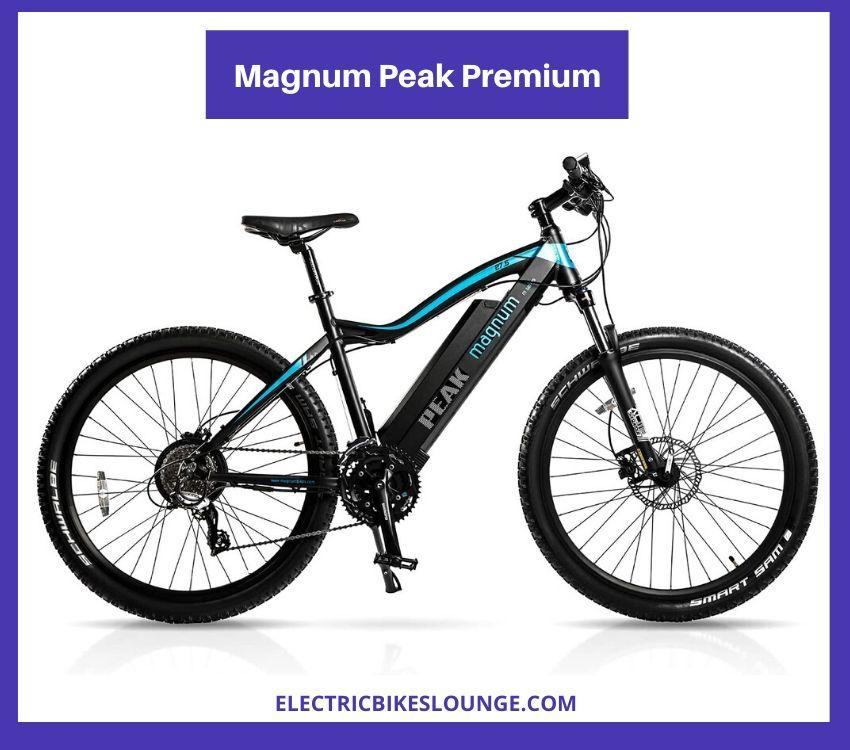 best e mtb Magnum Peak