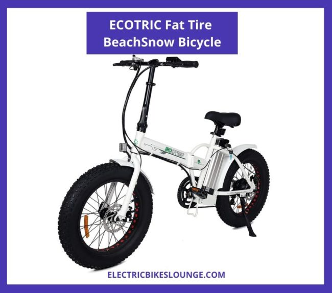 best electric mtb ecotric